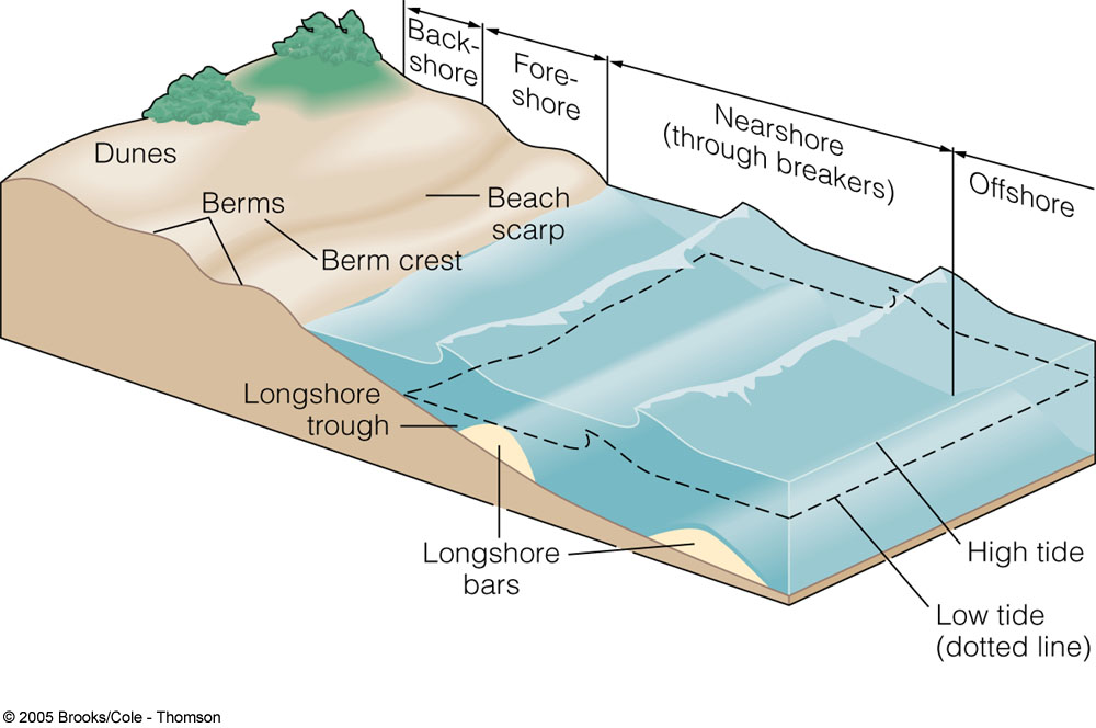 chapter 11 oceanography Learn oceanography chapter 11 with free interactive flashcards choose from 500 different sets of oceanography chapter 11 flashcards on quizlet.