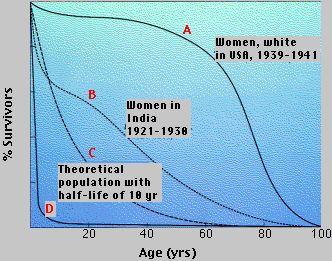 Lecpopecolb1ml survivorship curves plot survivorship against age ccuart Image collections