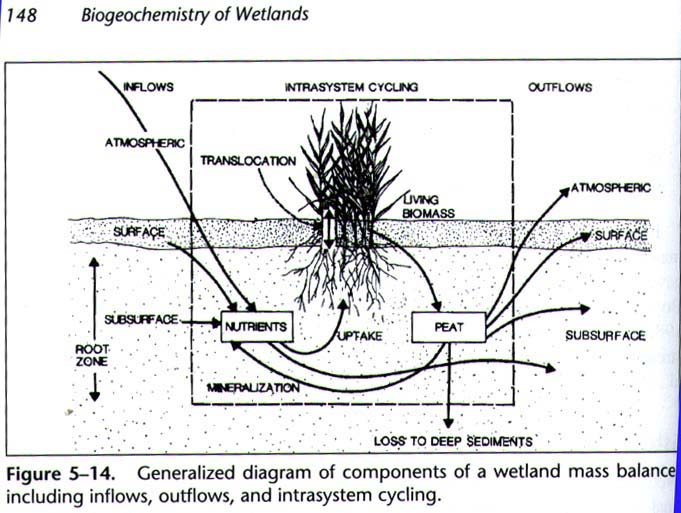 decrease suspended sediments how?